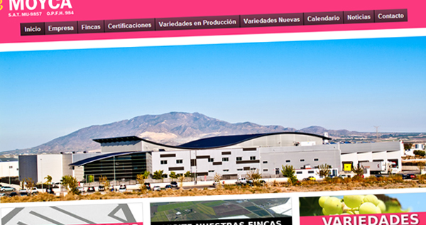 Diseño web moyca.org